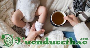 chè vằng lợi sữa cho phụ nữ sau sinh